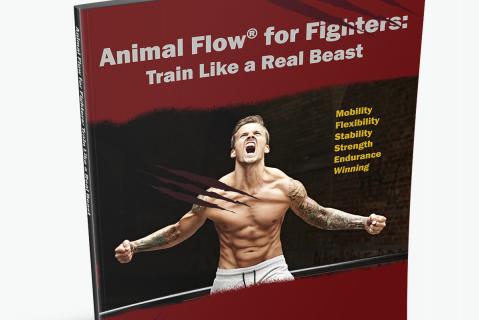 Sports Performance Self Assessment: BJJ/ MMA