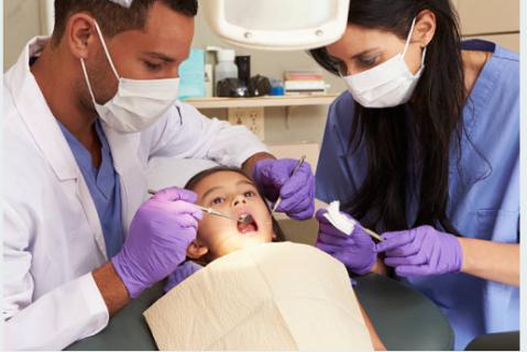Dental Support Technician Certification (499.00)