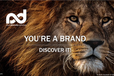 You Are A Brand - Discover It! (JDPBrandDisc)
