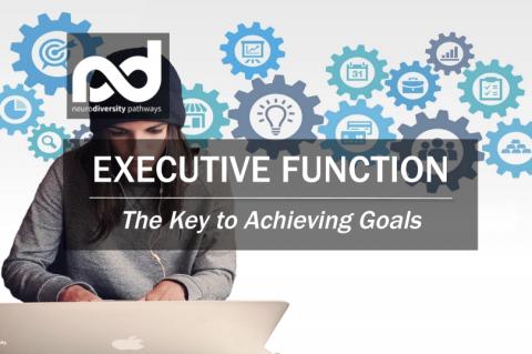 Executive Function (PEExecFun-Win21)