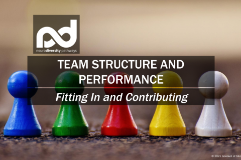 Team Structure and Performance (WCTeamPerf-Win21)