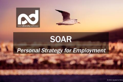 SOAR: Personal Strategy for Employment (JDSOARStrat-Win21)