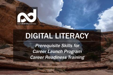 Digital Literacy Skills (DigitalLiteracy)
