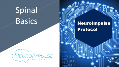 NeuroImpulse Protocol: Spinal Basics (NIP-C-SB)