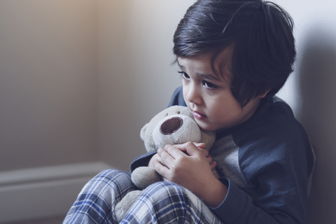 Impact of a Batterer: Domestic Violence in the Lives of Children (APCS110)