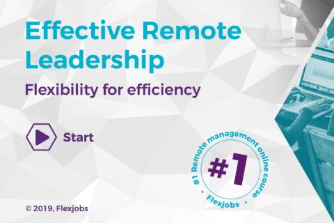 Effective remote leadership - DEMO