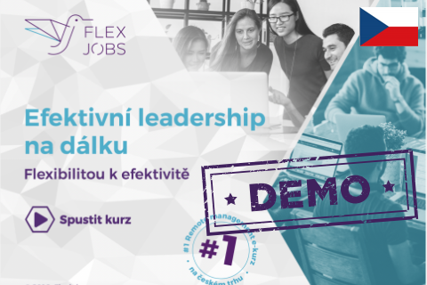DEMO - Efektivní leadership na dálku