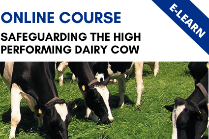 Safeguarding the High Performing Dairy Cow - E-Learn