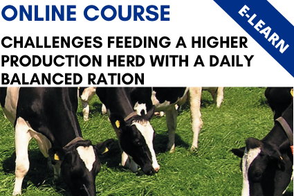 Challenges Feeding a Higher Production Herd with a Daily Balanced Ration - E-Learn