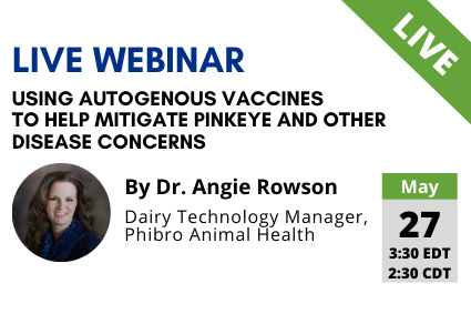 Using Autogenous Vaccines to Help Mitigate Pinkeye & Other Disease Concerns