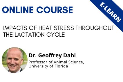 Impacts of heat stress throughout the lactation cycle - E-learn