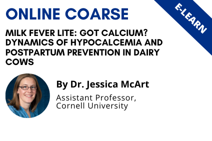 Milk Fever Lite: Got Calcium? Dynamics of Hypocalcemia and Postpartum Prevention in Dairy Cows