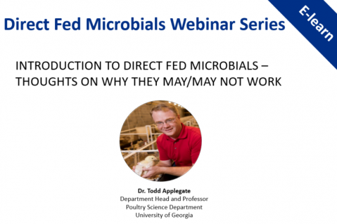 Introduction to Direct Fed Microbials – Thoughts on Why They May/May Not Work?