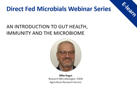 An introduction to gut health, immunity and the microbiome