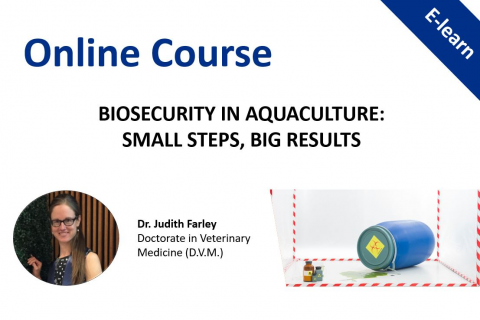 Bio-security in aquaculture: small steps, big results