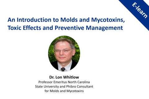 MYCOmpass Series: An Introduction to Molds and Mycotoxins