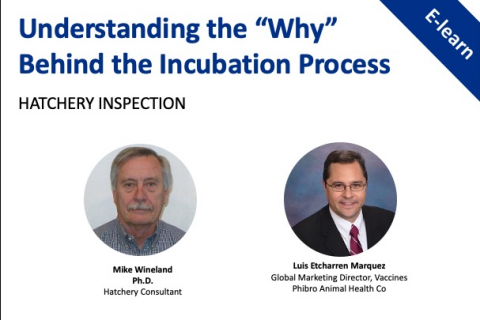 Understanding the 'Why': Hatchery Inspection
