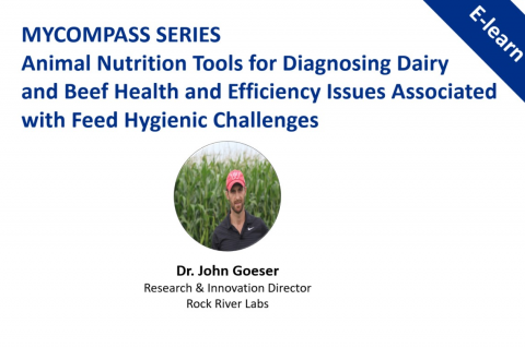MYCOmpass Series: Animal Nutrition Tools for Diagnosing Dairy and Beef Health