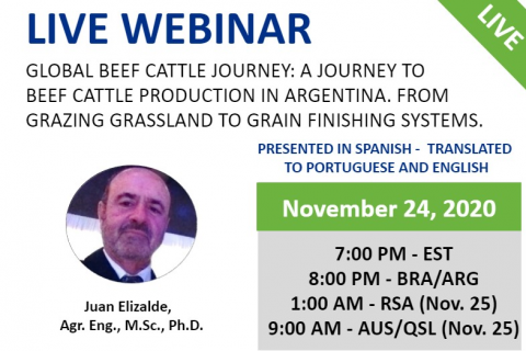 11/24/2020 Global Beef Cattle Journey: A Journey to beef cattle production in Argentina.