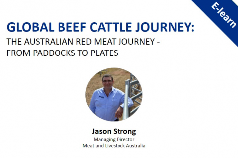 Global Beef Cattle Journey: The Australian Red Meat Journey - From Paddocks to Plates