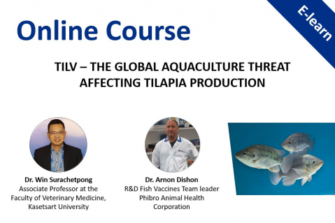 TiLV – the global aquaculture threat affecting Tilapia production