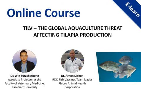 TiLV – the global aquaculture threat affecting Tilapia production
