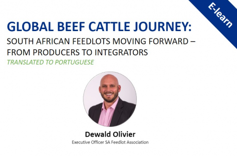 Global Beef Journey: South African Feedlots Moving Forward - Translated in Portuguese