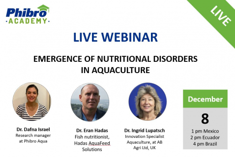 Emergence of Nutritional Disorders in Aquaculture