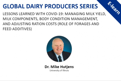 Global Dairy Producer Series: Lessons Learned With COVID-19:   Managing milk yield & More