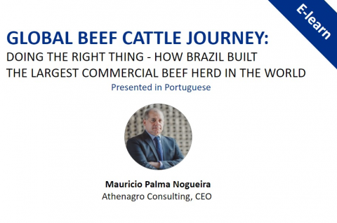 Global Beef Cattle Journey: Doing the right thing. Presented in Portuguese