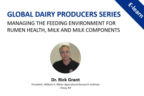 Managing the Feeding Environment for Rumen Health, Milk and Milk Components