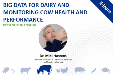 Global Dairy Series- Big Data for Dairy and Monitoring Cow Health and Performance