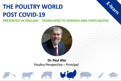 The Poultry World Post Covid-19 - English