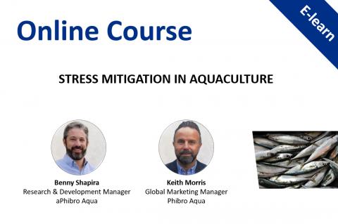 Stress Mitigation in Aquaculture