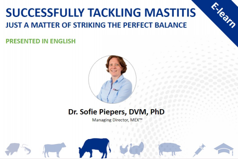 Successfully tackling mastitis – just a matter of striking the perfect balance