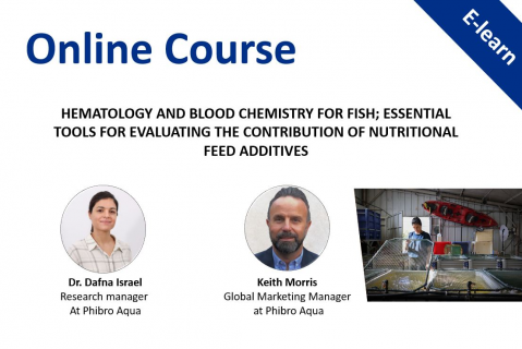 Hematology & Blood Chemistry for Fish; Evaluating the Contribution of Nutritional Feed Additives