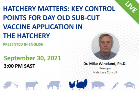 09/30 Hatchery Matters - Key Control Points for Day Old Sub-Cut Vaccine Application in the Hatchery