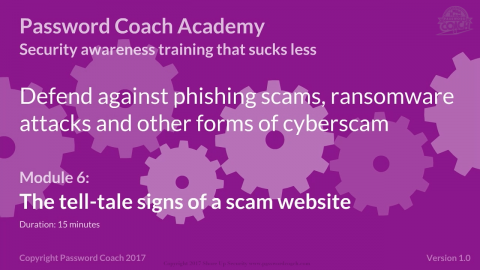 Module 6 – The tell-tale signs of a scam website. (P101-6)
