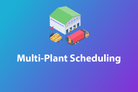 Multi-Plant Scheduling