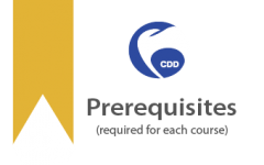 CDD - Prerequisites (301)