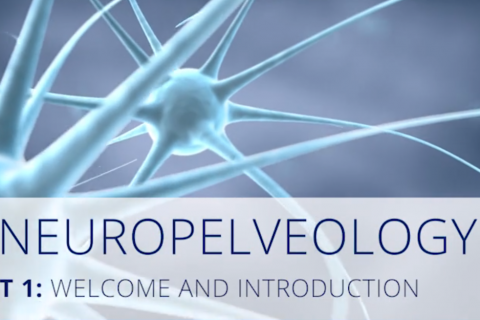 Intro Neuropelveology