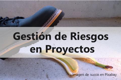 Gestión de Riesgos en Proyectos (PM03)