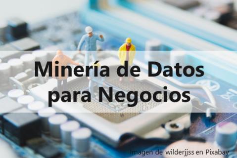 Minería de Datos para Negocios (MD02)