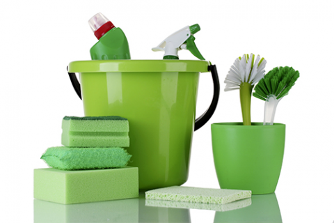 Green Cleaning (JS015)