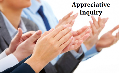 Appreciative Inquiry (E1031CR)