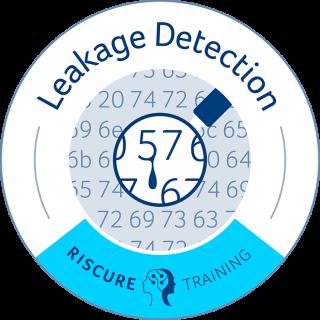 Understanding Leakage Detection (ONLINEULD)