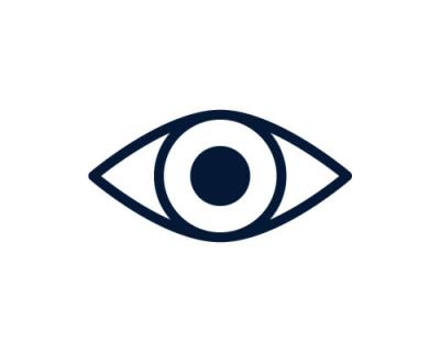 Visual Observer