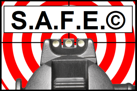 2021 S.A.F.E.© Gun Owner