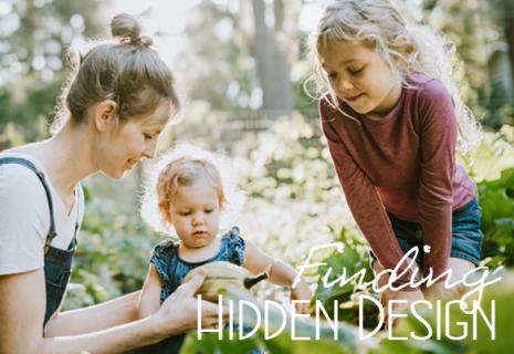 Finding Hidden Design (DE007)