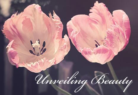 Unveiling Beauty (DE008)